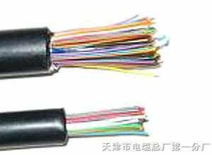 市内通信电缆HYV