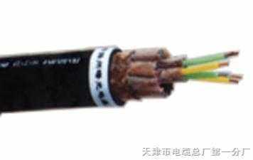 铜带屏蔽计算机信号电缆DJYP2VP2