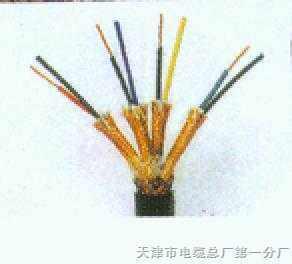 DJYPVP-10×2×0.5㎜²计算机电缆