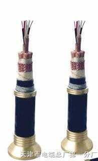 ZR-JVPV-1阻燃多对式计算机电缆