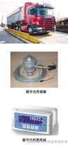 上海80吨磅,工地80吨磅秤,上海80吨汽车衡