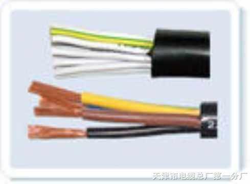 耐高温控制电缆KFVP1 KFVP2