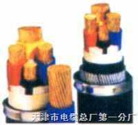低烟无卤阻燃电力电缆RVV
