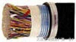 HYAT53铠装填充式通信电缆