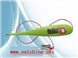 M401191-兽用电子体温计/硬头 型号:TB02-HRQ-A2   郭小姐