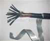 KVV22小猫牌铠装控制电缆,KVV225*4