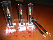 耐低温扁电缆YVFB、YVFPBZ新价格报价