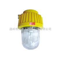 防爆平臺燈bfc8100,供應 BFC8730