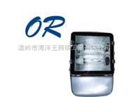 NFC9131节能型泛光灯,销售NFC9131