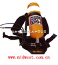 M251048正压式空气呼吸器(钢瓶) 型号:FSF1HTZKG5/30-1