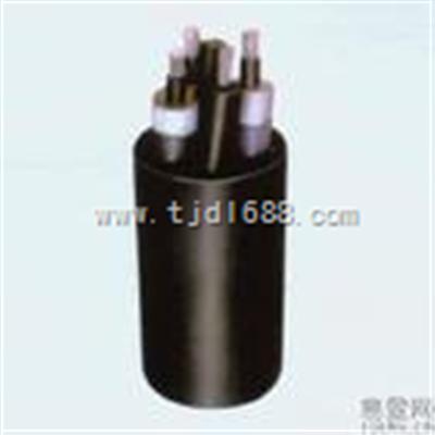 天津橡套电缆-YC橡套软电缆-新品线缆