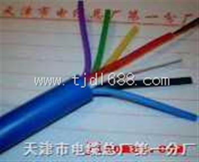 铠装电缆DJFPF22铠装耐高温计算机电缆