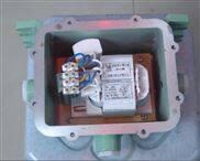 CBZ51-DIP 粉尘防爆镇流器 防爆电器箱 BAZ51 BDH BAL BAM8050 BJX8050