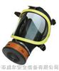 VERF-X化工安全防护设备 过滤式防毒面具