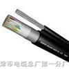 HYAC-10×2×0.5㎜自承式通信电缆HYAC