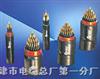 PTYAH-8×1.0㎜PTYAH铁路信号电缆