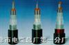 PTYA22-33×1.0㎜PTYA23|PTYA22铁路信号电缆