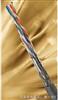 HYAP-10×2×0.5㎜HYAP屏蔽通讯电缆