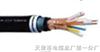 JVP2V22-2-10×2×0.75㎜²铠装电子计算机电缆