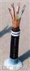 JYP2V22-1-12×2×0.75㎜²JYP2V22-1鎧裝分頻計算機電纜