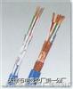 ZR-JYPV-2-1×2×0.5㎜²ZR-JYPV-2多对式阻燃电子计算机用电缆