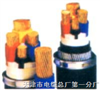 WDZ-RYY-3*10mm²低烟无卤阻燃电力电缆RVV