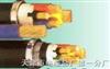 VV32-3*35+1*16mm电力电缆型号VV、VV22、VV32、