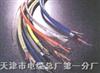 JVPV-8*2*0.5mm²;JVPV計算儀表電纜|JVPVP計算機電纜
