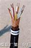 DJYJP2V22-6*2*0.75mm²直埋计算机电缆DJYJP2V22计算机电缆报价