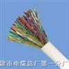 HJVVP-25*2*0.5mm供應局用屏蔽通信電纜HJVVP