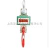 OCS20t直显式电子吊钩磅,电子吊钩磅电池价格