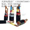电力电缆-VVRP-塑力电缆